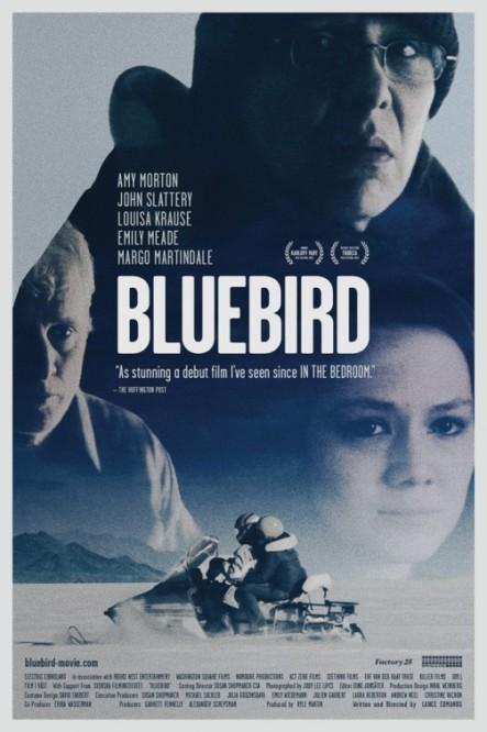 bluebird_ver2